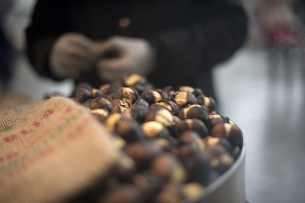 Hot roast chestnuts